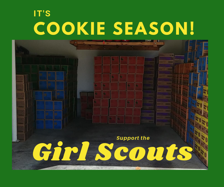 Girl scouts, scout, cookie, thin mints, badge, badges, badgework, STEM, science, career, training, learning, teaching. workshop