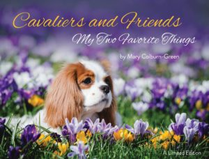 Cavalier, friends, dogs, Mary, Gree, Colburn. coffee table, book, rescue, puppies, kids, pets, kennek, country, australia, japan, us, uk