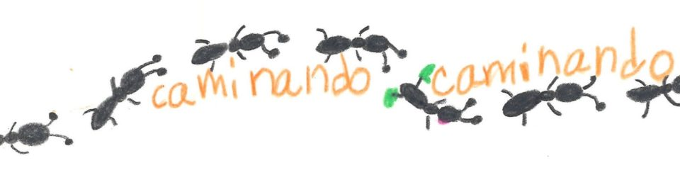 ants, walking, Spanish